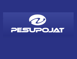 pesupojat-logo